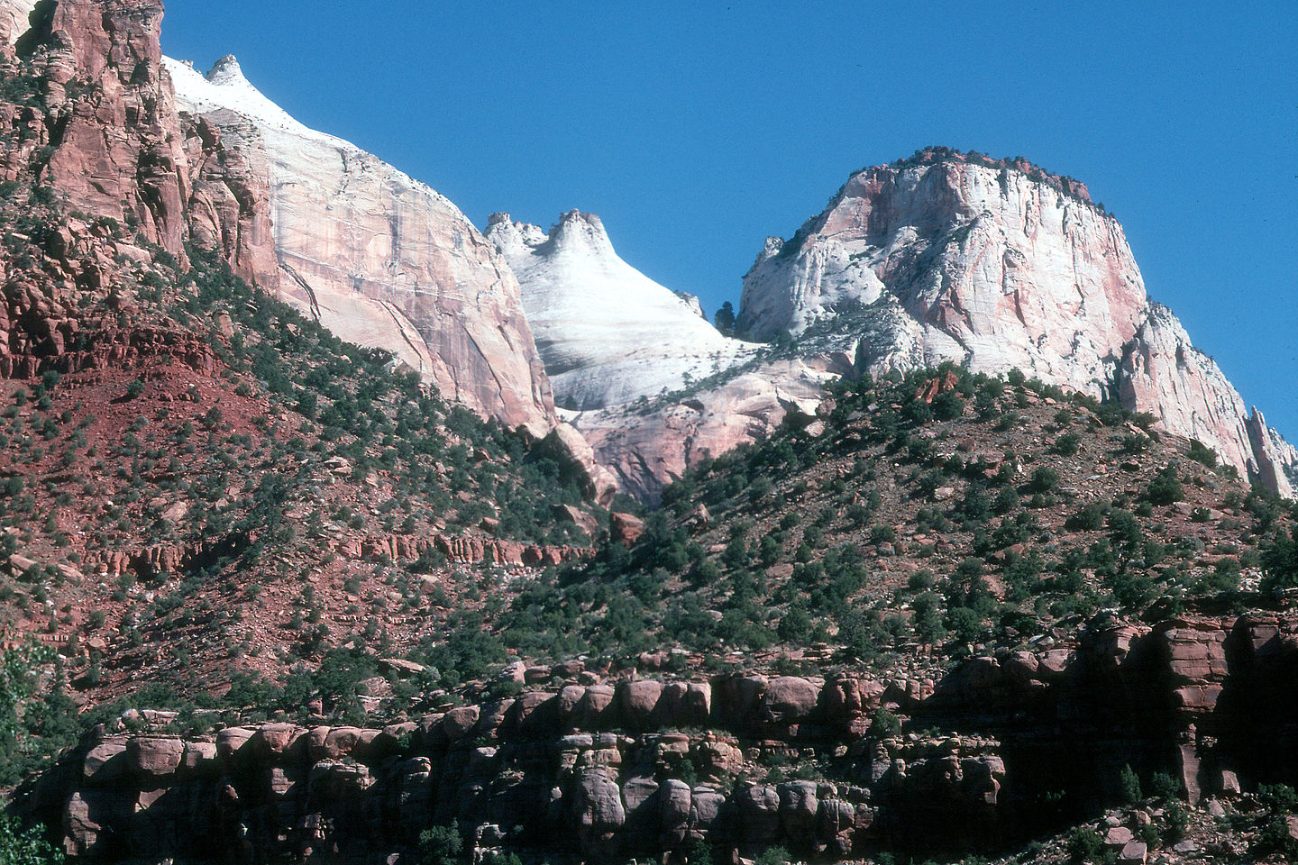 View from Zion Canyon Drive