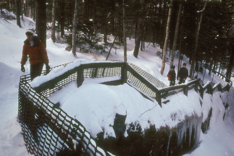 Lolo and Boys on Sabbaday Falls Hike