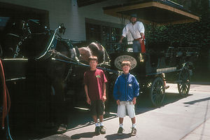 Boys with horse-drawn carriage