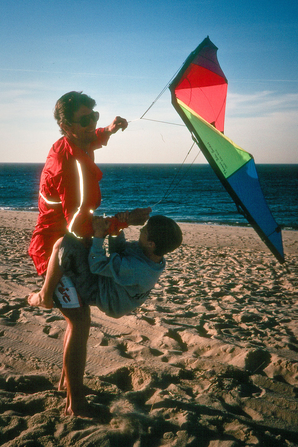 Herb flying offspring and kite