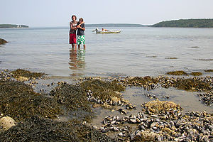 Brotherly love during Western Bay boat trip