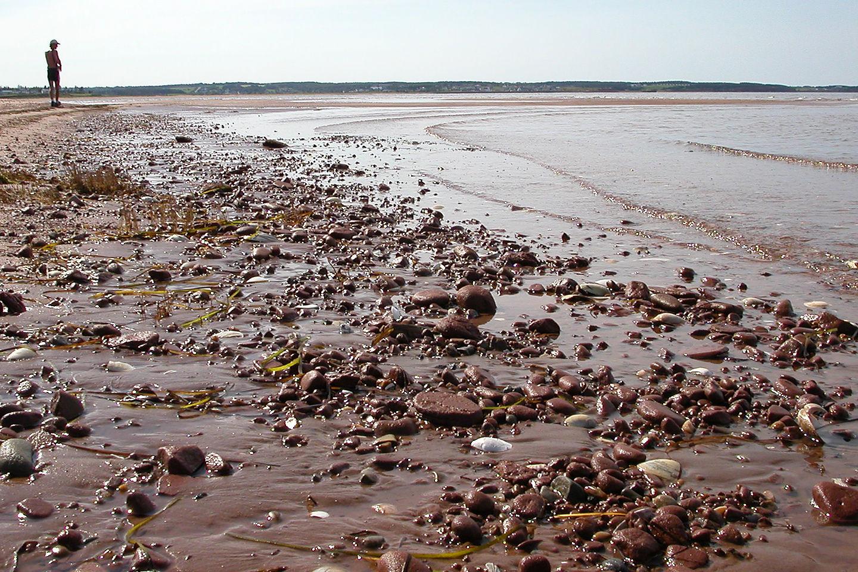 Shoreline of Rustico Bay Beach