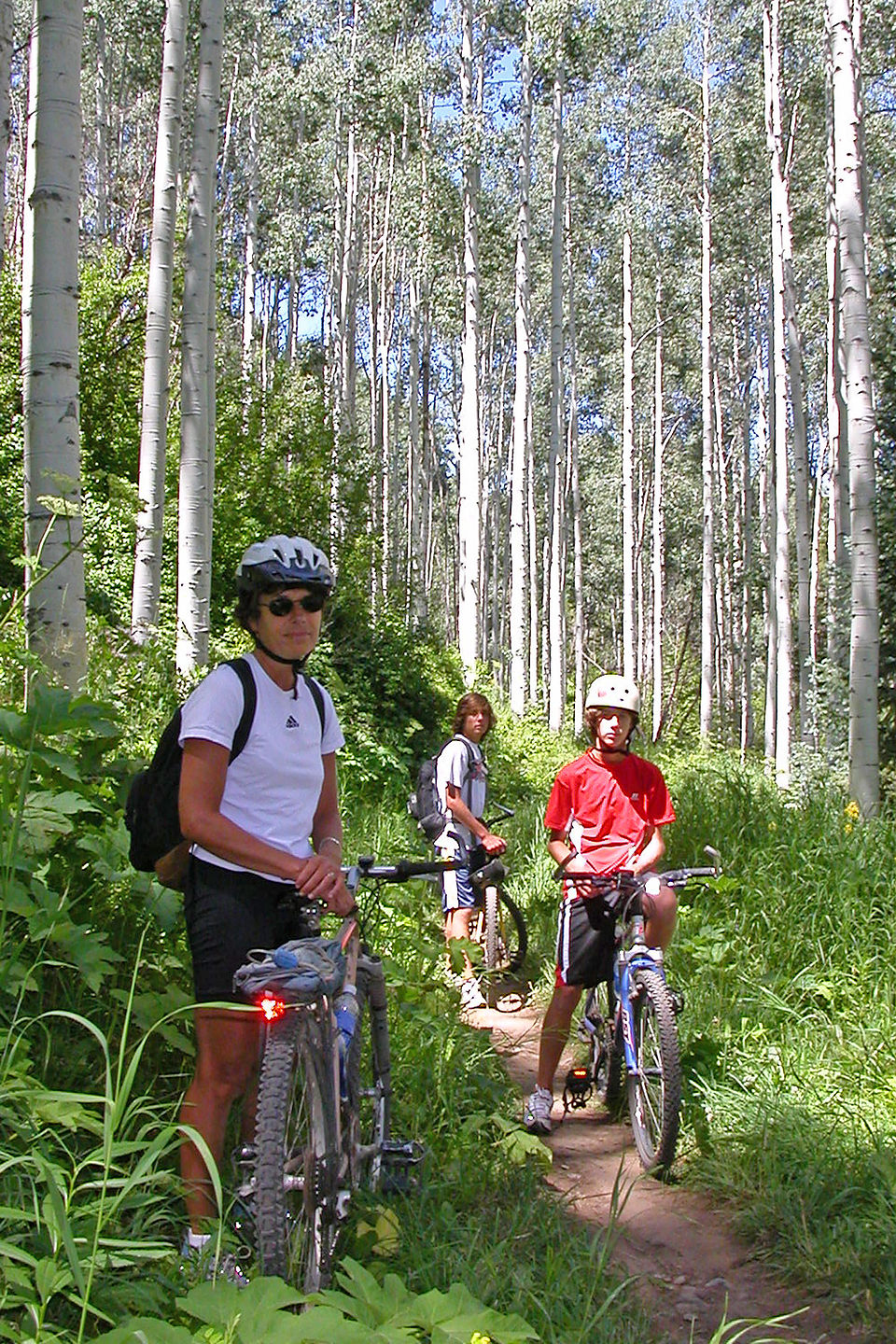 Lolo and boys on Vail singletrack