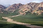 Denali tour mountains