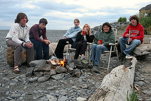 Gang roasting marshmellows around the beach fire