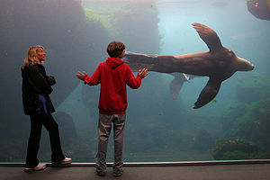 Michelle and Tommy at Alaskan Sea Life Center