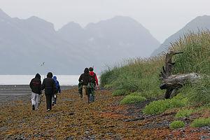 Gang hiking on Caine's Head Coastal Trail