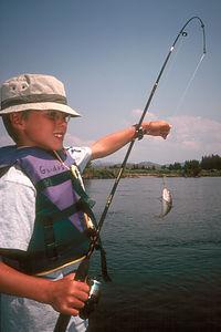 Tom with tiny fish