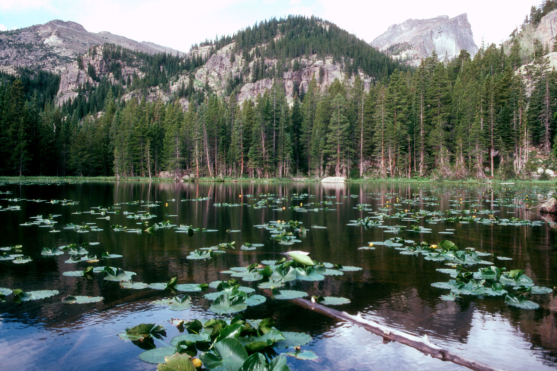 Lake along Emerald Lake Trail