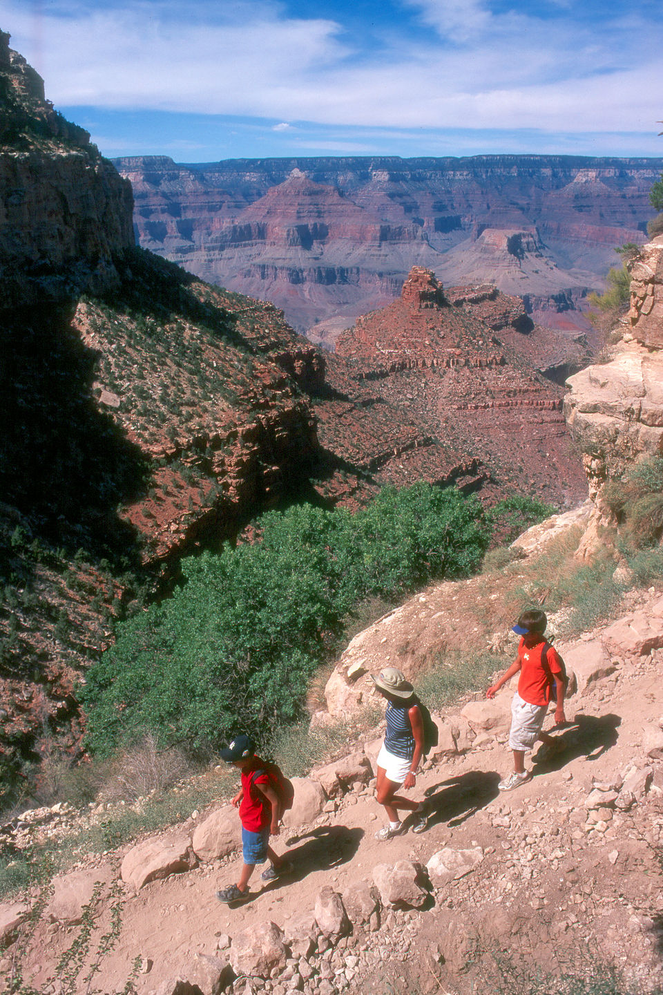 Lolo and the boys hiking the Bright Angel Trail
