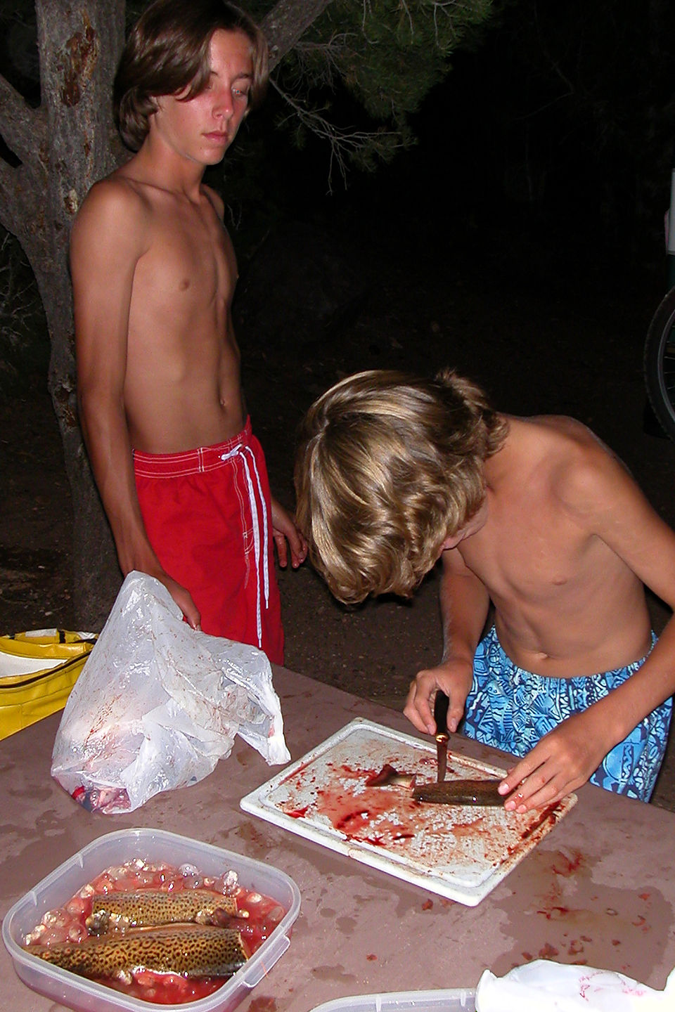 Tommy's first filleting of trout