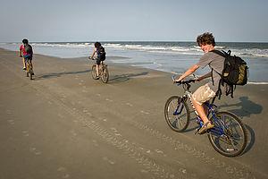 Family biking along shoreline