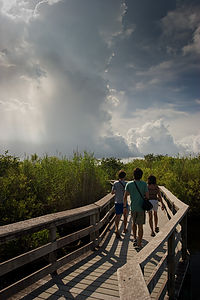 Anhinga Trail hikers with storm clouds