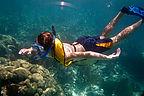 Tommy Snorkeling - AJG