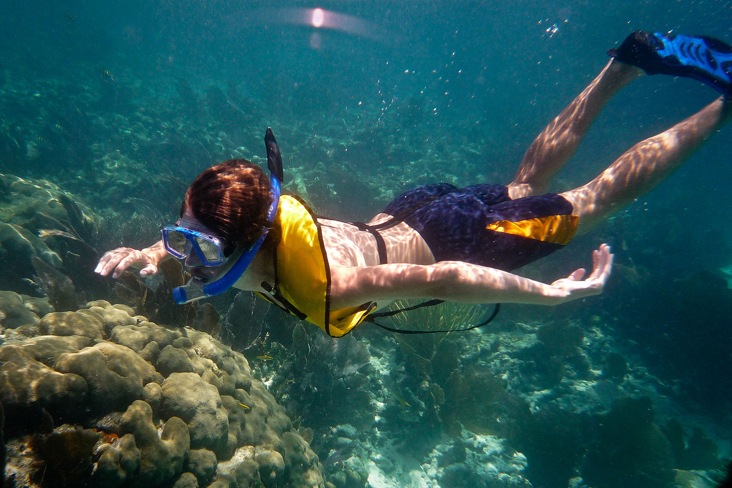 tommy snorkeling   ajg john pennekamp state park fl   lolo u0027s extreme cross country rv trips  rh   cross country trips