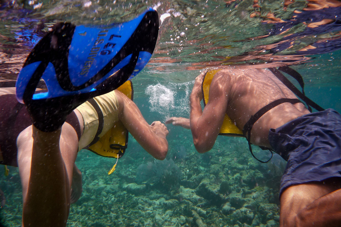 Mom and Dad snorkeling - TJG