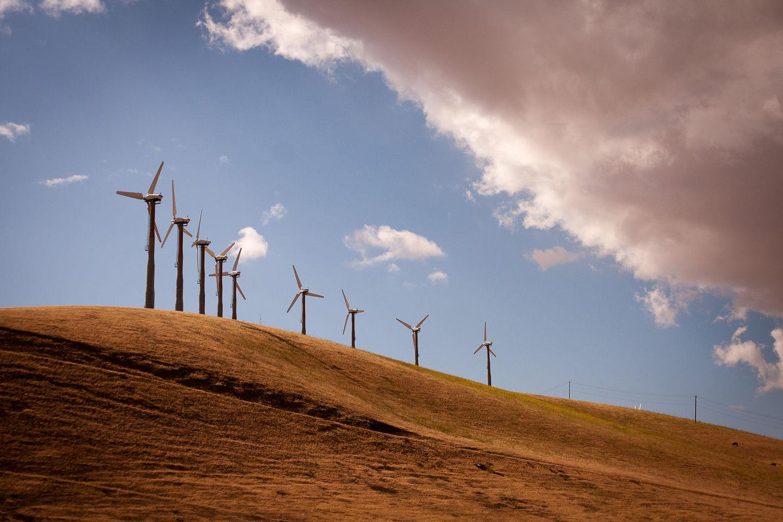 Altamont Pass Windmills - AJG