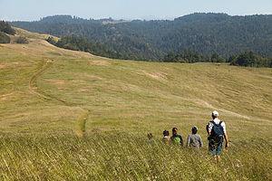Hiking Willow Creek