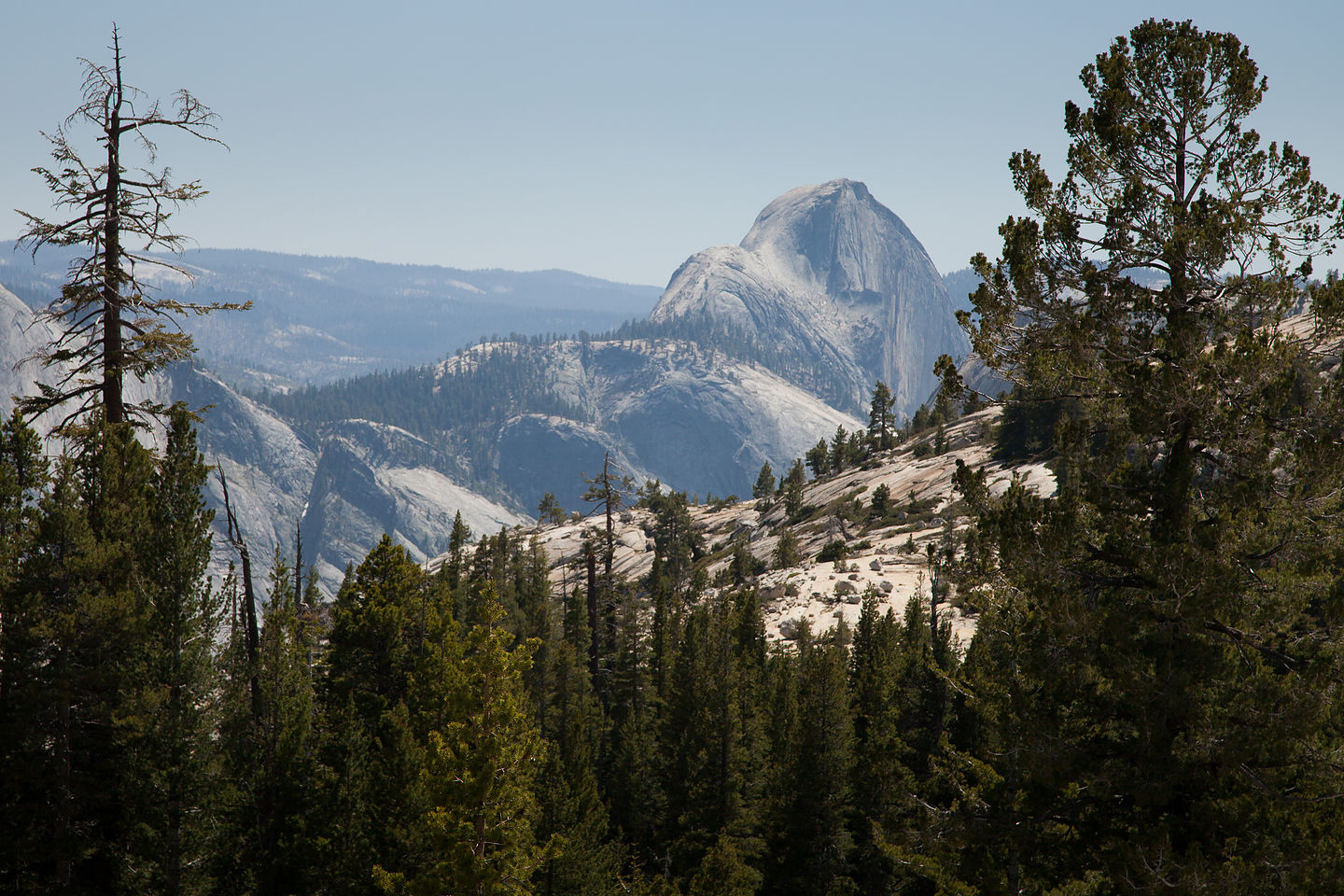 Back of Half Dome from Tioga Pass Road