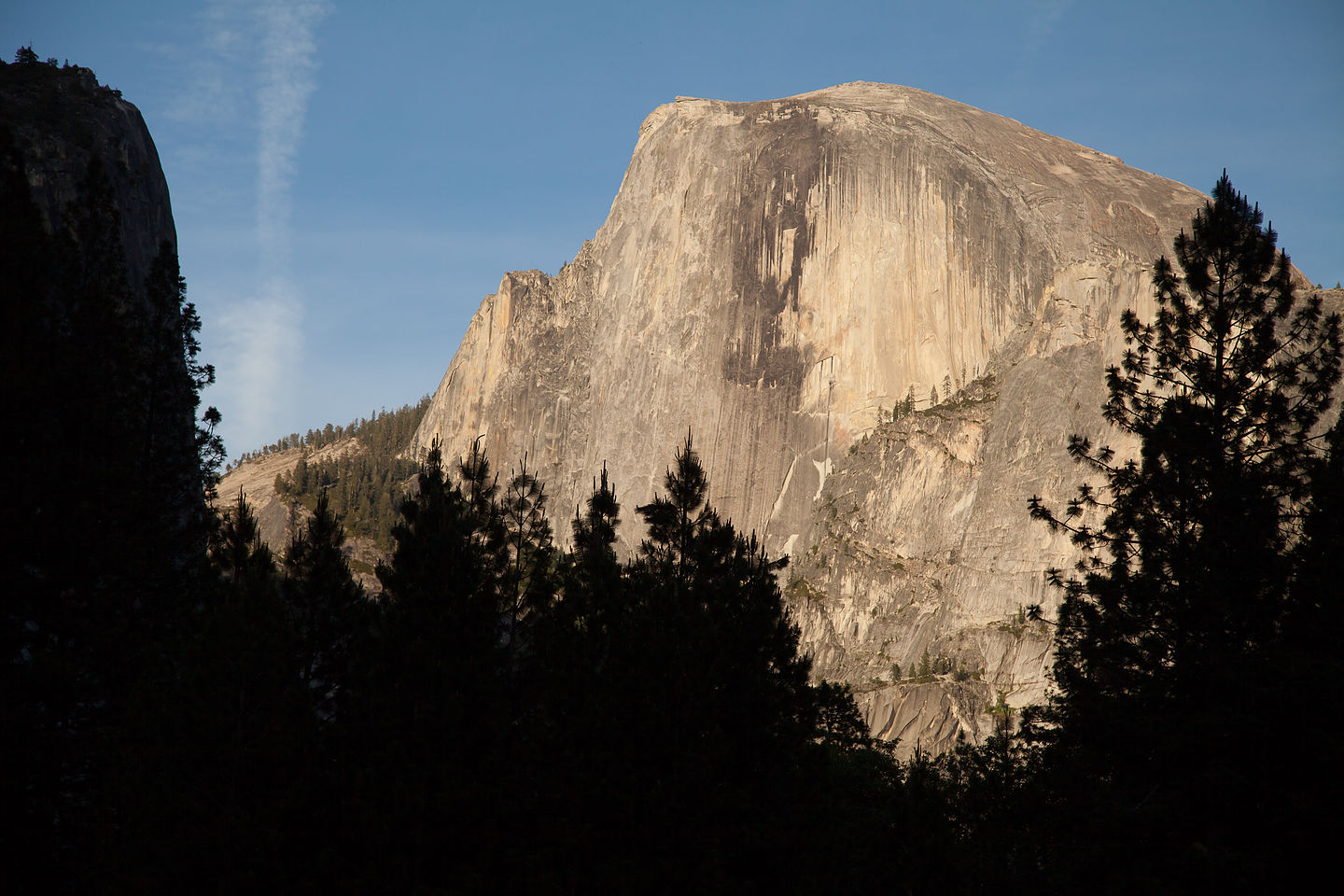 Half Dome from Ahwahnee Meadow