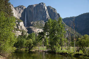 Yosemite Falls and Merced River