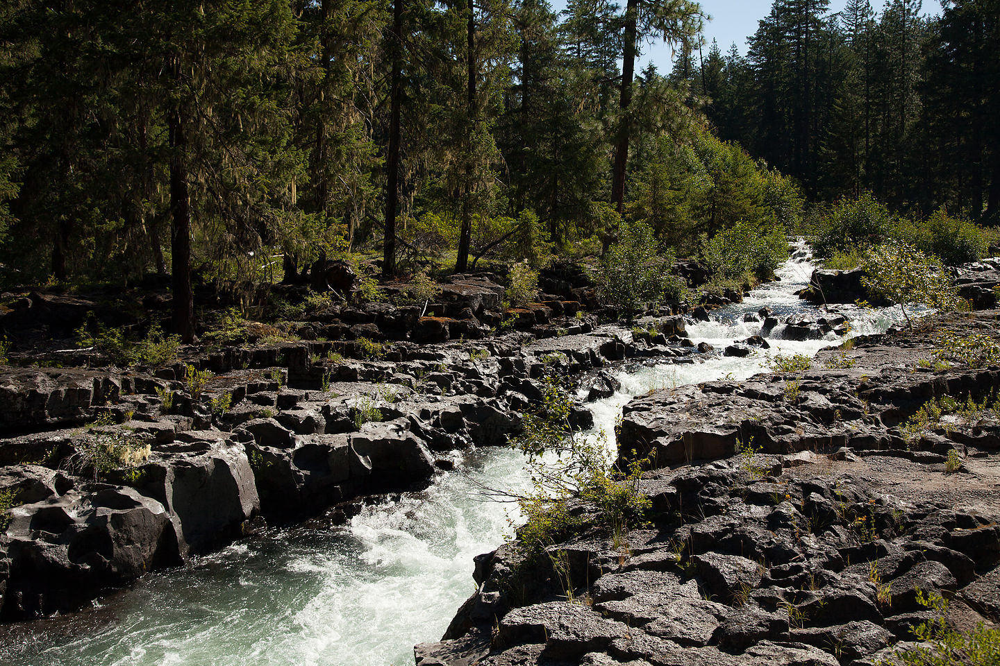 Rogue River Gorge Viewpoint