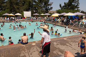 Petaluma KOA Pool