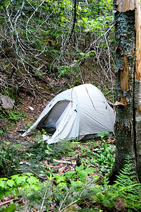 Backcountry Tent Site