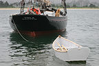 Dog on Sailboat Vela with Dinghy
