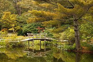 Mytoi Garden Arched Wooden Bridge