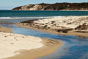 Lamberts Cove Rivulet