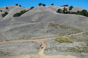 Herb on Matt Davis Trail