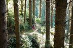 Lolo Running Through Jungle