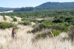 Lolo Hiking the Oregon Dunes National Recreation Area