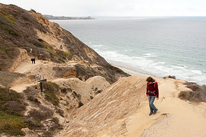 Hike Down to Torrey Pines State Beach