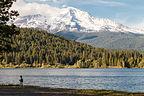 Lolo on Lake Siskiyou Shore with Mount Shasta