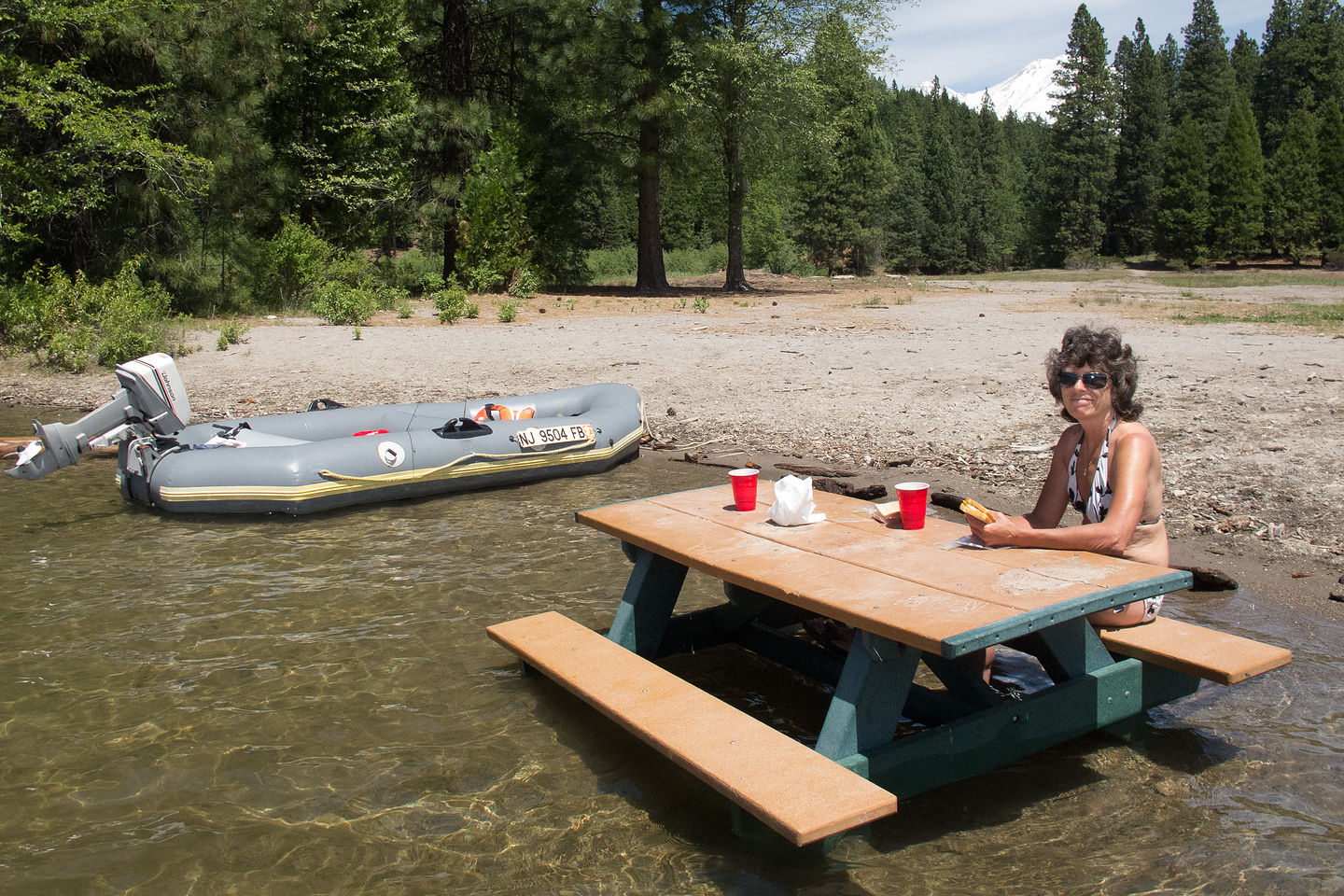 Lolo lunching on submerged Picnic Table