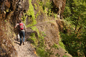 Hiking the Eagle Creek Trail carved into the Cliff