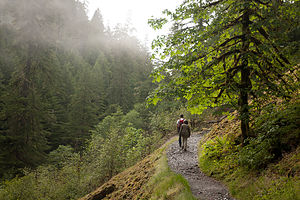 Hiking Eagle Creek Trail