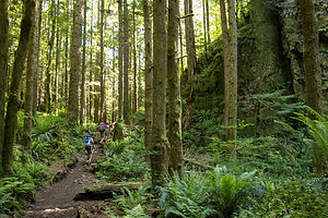 Hiking the Little Si Trail