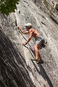 Herb Climbing