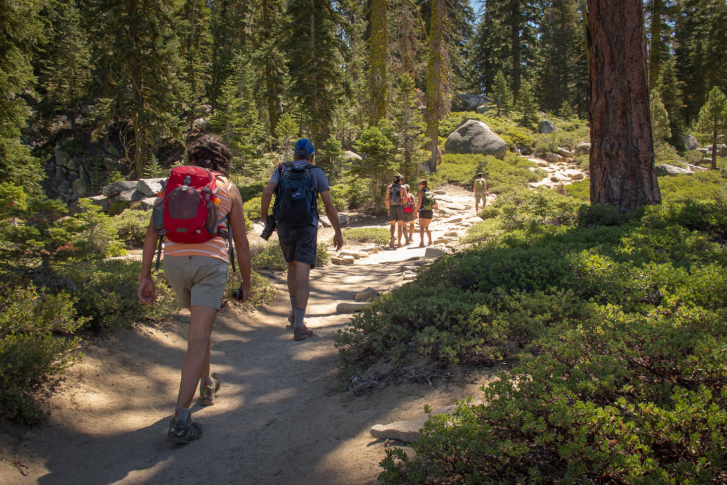 Hiking to Sentinel Dome