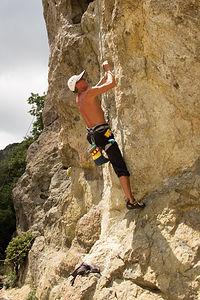 Herb Climbing at Mount Saint Helena