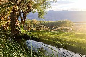 Death Valley - Saline Valley Warm Springs, CA | Lolo's