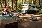 North Pine campsite with Lazy Daze