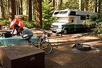 North Pine campsite with Lazy Daze