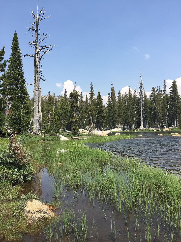 Polly Dome Lake
