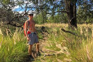 The Pu'u Wa'awa'a cinder cone hike begins