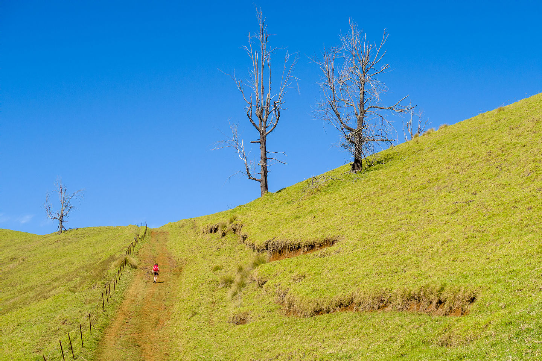 Trail to the top of the Pu'u Wa'awa'a cinder cone