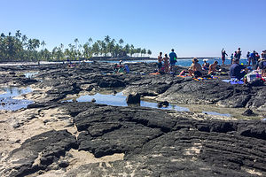 Snorkeling beach near Pu'uhonua O Honaunau National Historical Park
